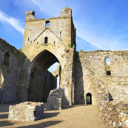 Dunbrody Abbey near Warren Farm Ireland